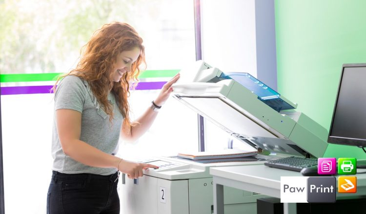 Printer & Photocopier Repairs - Service & Maintenance - Paw Prints