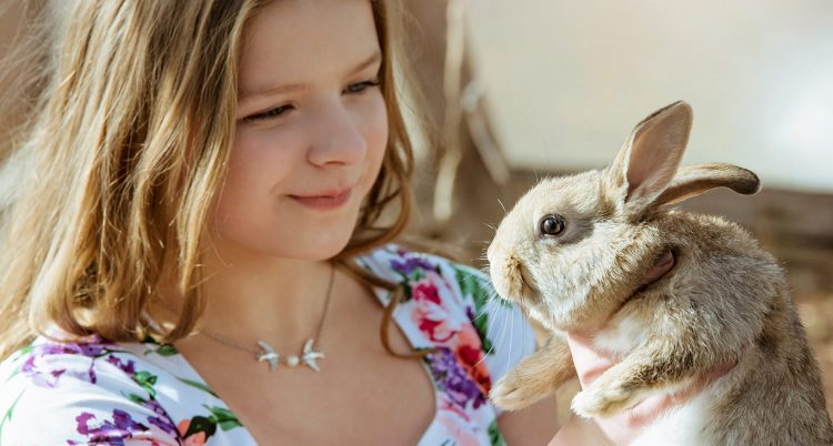 How Tiny Friends Farm Rabbit Food Are Exclusive